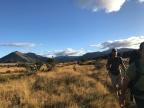 Day 122 – km 2752 to Te Anau
